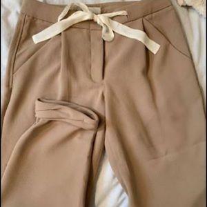 Wilfred Allant Pants (Aritzia)